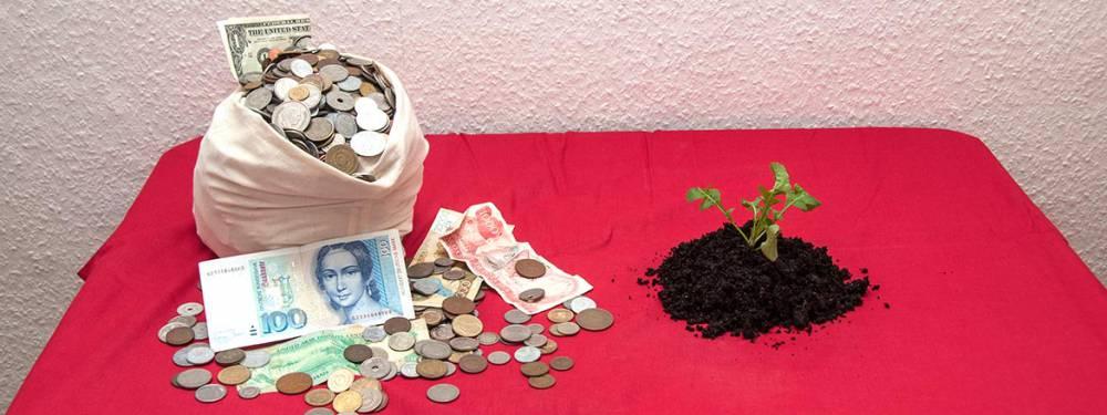 Ein Berg Schlafmünzen neben einem grünenden Salat